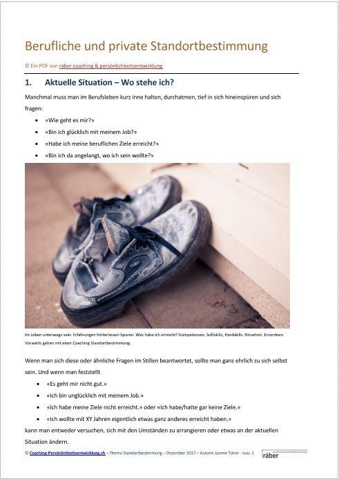 PDF Berufliche und private Standortbestimmung