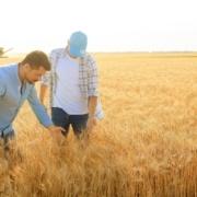Klima- und Umweltberufe- helfen Schüpfung zu bewahren