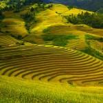 Vietnam ist eine Reise wert - beeindruckende Natur